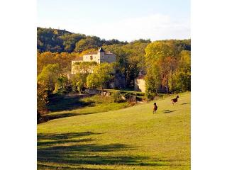 Chateau Le Quille - Limousin vacation rentals