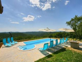 4 bedroom villa with a stunning view over istrian hills - Sveti Petar u Sumi vacation rentals