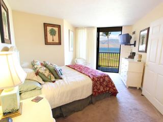 Oceanfront; Clean; Perfect Kihei Vacation Condo! - Kihei vacation rentals