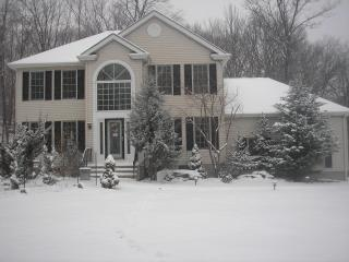 CAMELBACK LARGE SKI HOME - Tannersville vacation rentals