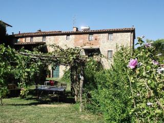 Typical Tuscan farmhouse between Florence and Lucca - Pescia vacation rentals