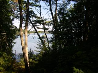 Beautiful, Peaceful Mid-coast Maine Summer Cottage - South Bristol vacation rentals
