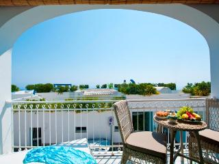 Mariquita pretty apartment in Praiano - Praiano vacation rentals