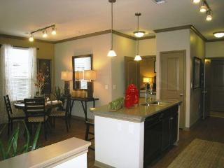 Furnished 1 bedroom The Woodlands TX - Lodge - The Woodlands vacation rentals
