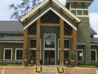 Furnished 2x2 Apartment The Woodlands TX - Lodge - The Woodlands vacation rentals