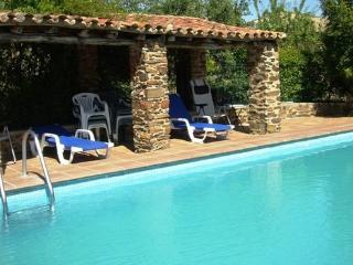 Lodge-Studio for two people with air  conditioning, private barbecue, pool - ES-1073195-Valencia de Alcantara - Province of Caceres vacation rentals