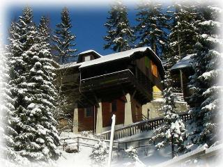 Apartment house Celeia - Golte (ski, hike, bike) - Mozirje vacation rentals