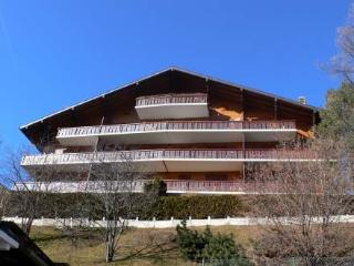 Chalet Bel Air ~ RA8934 - Vaud vacation rentals