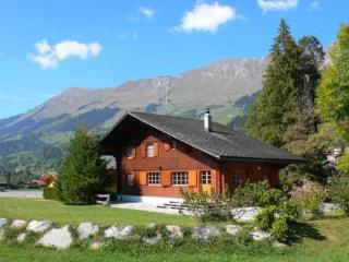 Chalet Happy ~ RA8810 - Les Diablerets vacation rentals