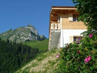 Chale La Poya ~ RA8765 - Fribourg vacation rentals