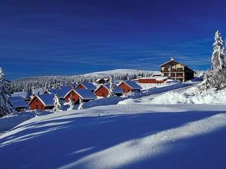 Lillehammer ~ RA41430 - Eastern Valleys vacation rentals