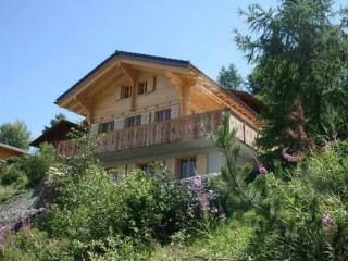Chalet Colorado ~ RA9417 - Nendaz vacation rentals