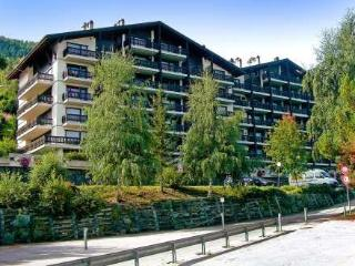 Eden Roc 28 ~ RA9405 - Nendaz vacation rentals