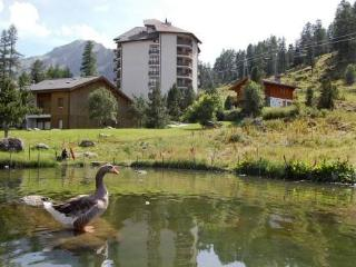 Mont Fort 55 ~ RA9697 - Valais vacation rentals
