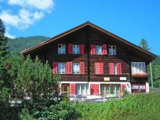 Studio West ~ RA10047 - Jungfrau Region vacation rentals