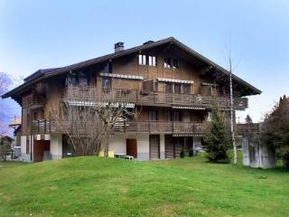 Wilderswil ~ RA9975 - Wilderswil vacation rentals