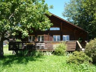Minnehaha ~ RA9923 - Lauenen vacation rentals