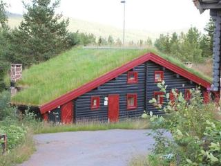 Trysil ~ RA39898 - Eastern Valleys vacation rentals