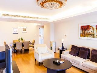 Luxury 3BR @  Central Area Singapore - Hong Kong vacation rentals