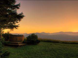 The Cabin, Luxury in the countryside with Hot tub - Conwy vacation rentals