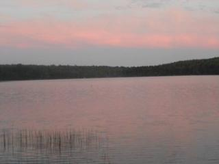 Comfy Cozy Cottage on Rocky Pond - NEW! - Stonington vacation rentals