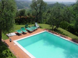 charming restored barn with private pool - Lucca vacation rentals