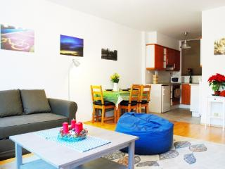 CR116Budapest - Acacia One Bedroom Apt in the Center - Budapest & Central Danube Region vacation rentals