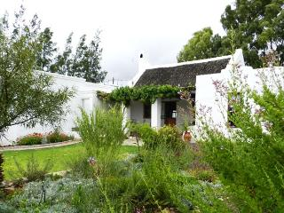 Wild Almond,A Petite Country Cottage In McGregor - McGregor vacation rentals