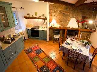 Blue House in the Tuscia area - Roccalvecce vacation rentals