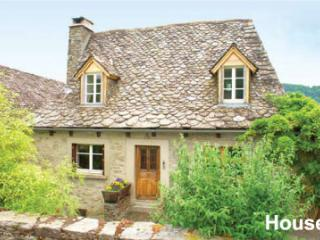 large family house in pretty village in aveyron - Lacroix-Barrez vacation rentals