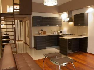 City Apartment - Poland vacation rentals