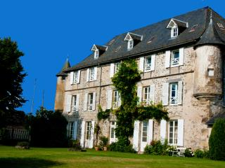 Authentic castle in the middle of France - Savennes vacation rentals
