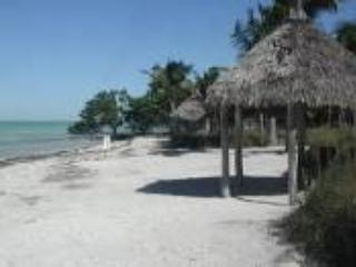 Tropical Paradise in the Florida Keys - Long Key vacation rentals