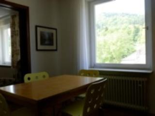 Vacation Apartment in Baden Baden - 700 sqft, central, quiet, stylish (# 4721) - Black Forest vacation rentals