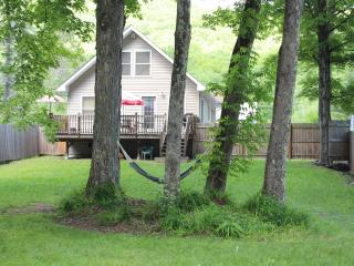 BelleHouse - Modern, Convenient, Belleayre Mountain House - Catskills vacation rentals