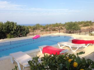 Pine Tree Villa - magic! - Ayios Amvrosios vacation rentals
