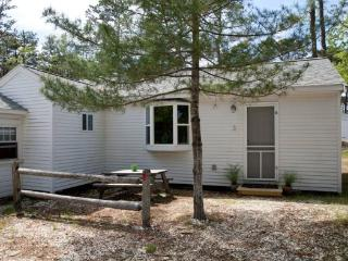 Updated Cabin in Beautiful Wellfleet - 1937 Route 6 - Chatham vacation rentals