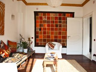 Very central Artist's apartment - Sultanahmet vacation rentals