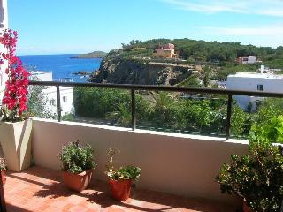Luminous & beautiful apartement for rent in Ibiza - Roco Llisa vacation rentals