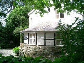 Holiday in the Country at The Pool Cottage - Machynlleth vacation rentals