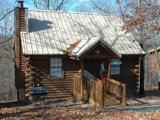 Honeymoon or GetAway Cabin1 Bdrm,Wooded, Secluded,, Jacuzzi, WiFi, 1 mile from SDC - Branson vacation rentals