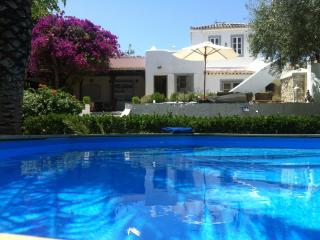 Summernight´s Dream Villa on Spetses Island - Spetses vacation rentals