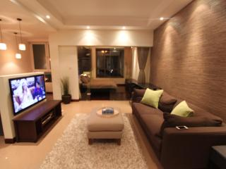 Downtown Cozy Deco 1 Bd Apartment Jing'an FCC - Shanghai Region vacation rentals