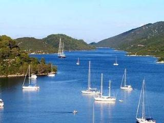 Aloha Polače Mljet - Govedari vacation rentals
