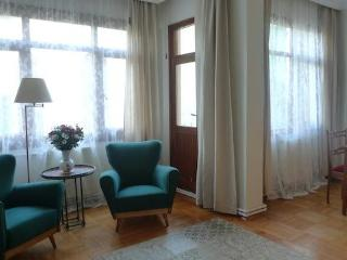 Large Duplex 3 bdr apartment in centre of Istanbul - Istanbul & Marmara vacation rentals