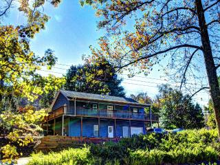 Mountain Side luxury Home Near Asheville - Fairview vacation rentals