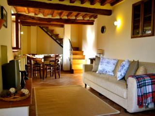 Tuscan Cottage for 4 - Cantagrillo vacation rentals
