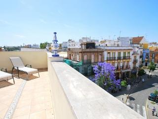 [653] Fantastic apartment with terrace in Triana - Penaflor vacation rentals