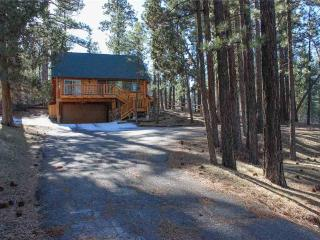 Living Log Cabin #1494 - Big Bear City vacation rentals