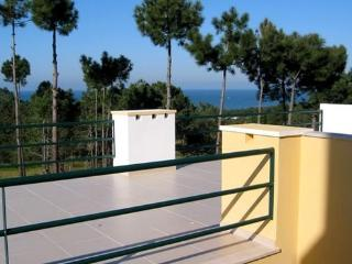 Very quiet location in a natural reserve -  villa with 200m2 of living space - PT-1075630-Nazaré - Nazare vacation rentals